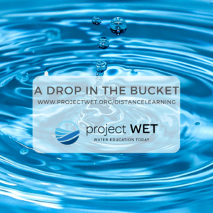 A Drop in the Bucket Photo
