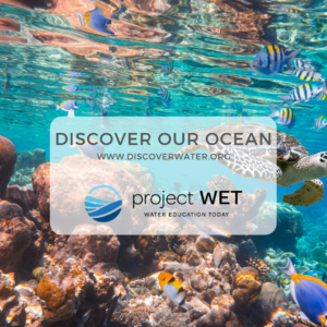 Discover Our Ocean Photo
